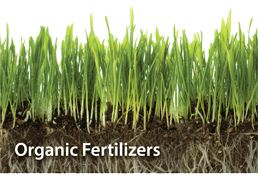 We only use Organic Fertilizers at A Good Earth Maintenance
